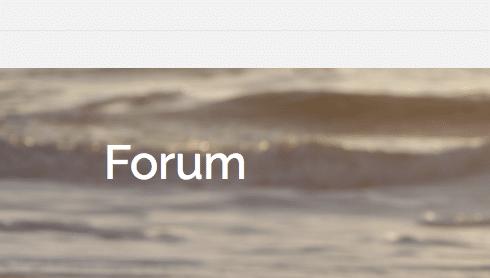 Forum narzissmus